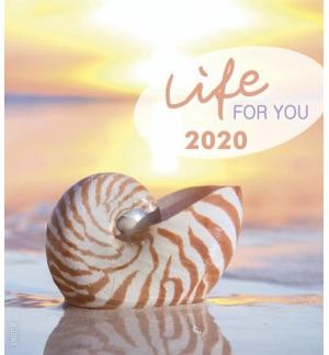 Calendrier Vie 2020 en Anglais