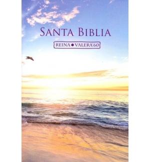 Bible Espagnole Santa Biblia